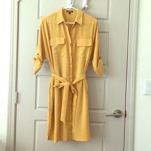 Express Sz L Shirt Dress